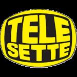 telesette